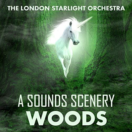 London Starlight Orchestra