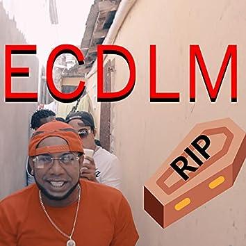 Rip Ecdlm