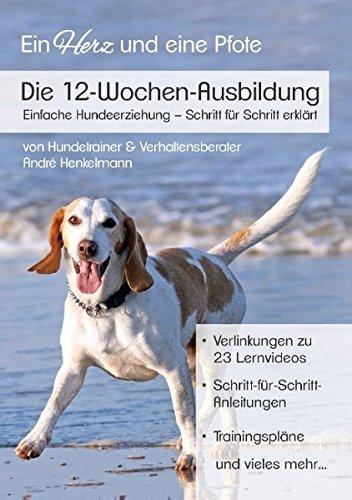 Die 12-Wochen-Ausbildung: Einfache Hundeerziehung - Schritt für Schritt erklärt