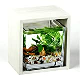XLSQW Fishbowl Creative Aquarium Miniature Landscape Fish Tank Glass Container Goldfish Bowl Table Decoration Wooden Frame with Light, for Kids Room Office Home,B