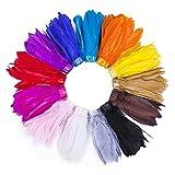 Flecos de plumas de ganso reales con flecos de 15-18 cms en cinta de satén, 13 colores impresionantes, decoración del hogar, borde de ropa, vestido elegante, disfraz. Turquoise, 1 Yard