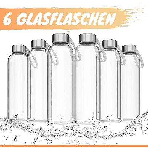LA VIDA AQUA Glasflaschen 500ml 6er Set - Trinkflasche Aus Glas Auch Für Kinder BPA-frei Spülmaschinenfest Auslaufsicher - Water Bottle Wasserflasche für Smoothie Flasche & Sport Trinkflaschen