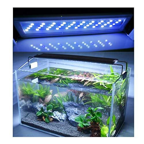 Bright Classic LED Aquarium Light, Reef Plant Fish Tank Light with Extendable Brackets, Aquatic Plant Growth Lamp White and Blue LEDs