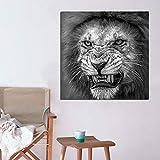 KWzEQ Cartel de Lienzo de Animales de león Blanco y Negro Pintura de Paisaje Salvaje Regalo de Arte de Pared Sala de Estar Dormitorio,Pintura sin Marco,70X70cm