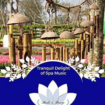 Tranquil Delight Of Spa Music