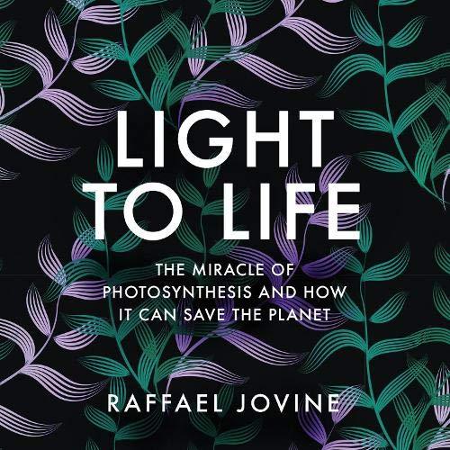 『Light to Life』のカバーアート