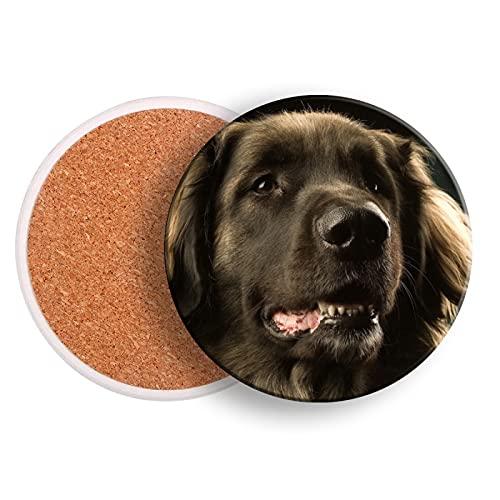 Juego de 2 posavasos para bebidas, diseño de perro Leonberger bozal de cerámica oscura para bebidas con base de corcho para protección de mesa, evitar daños en muebles