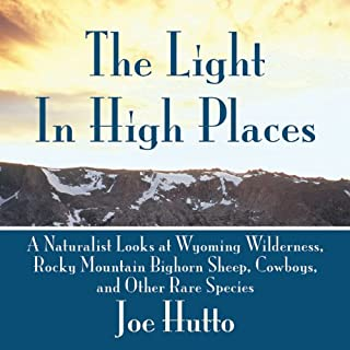 The Light in High Places audiobook cover art