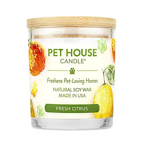 One Fur All - 100% Natural Soy Wax Candle, 20 Fragrances - Pet Odor...