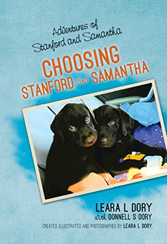 Adventures of Stanford and Samantha: Choosing Stanford and Samantha (English Edition)