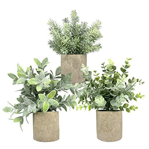 Hasken - Juego de 3 plantas artificiales en macetas pequeñas de eucalipto en macetas para decoración del hogar, oficina, escritorio, ducha, decoración
