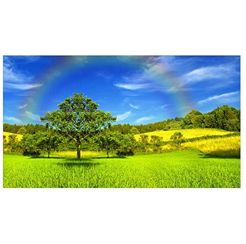 Sky Rainbow Landscape 3D Vlies Wandbild nach Regen-Mass angefertigt Fototapete Tapeten Wandtapete XXL Moderne Wanddeko Design Wand Dekoration Wohnzimmer Schlafzimmer Büro Flur-200(w) x140(H) cm