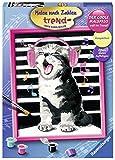 Ravensburger Malen nach Zahlen 28431 - Singing Cat - Für Erwachsene und Kinder ab 12 Jahren