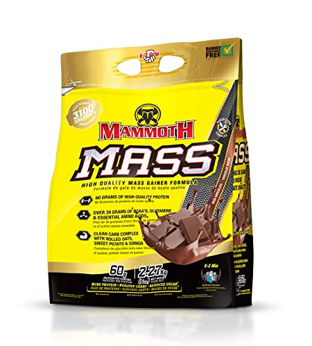 Inter-Active Nutrition Mammoth Mass Supplement, 5 lbs, Chocolate,2.2kg...