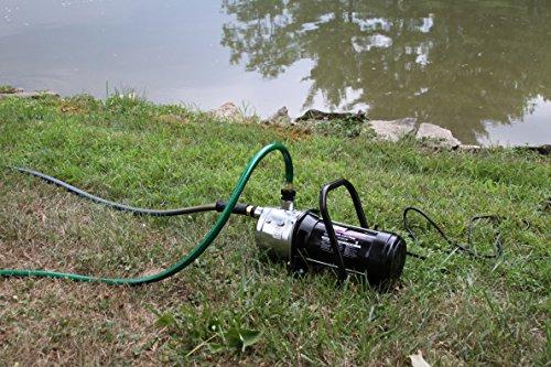 WAYNE PLS100 1 HP Portable Stainless Steel Lawn Sprinkling Pump