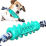 OTAN Dog Toothbrush Chew Toys Doggy Oral Dental Care Durable Rubber Brushing Stick with Cotton Bite Rope for 25-70 LBS Dogs Lake Blue