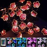 LED Bunt Lichterkette Blumen,4M 40er USB & Batterie LED Blume Lichterkette Innen, 16 Farben Lichterkette für Zimmer mit Fernbedienung für Garten, Bäume, Valentinstag, Hochzeiten, Mädchen Teenager Deko