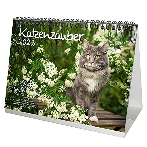 Calendrier de table 2022 - Format A5 - Pour chats et bébés...