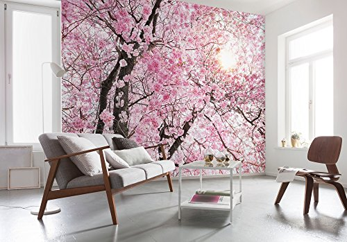 Komar - fleece fotobehang BLOOM - 368 x 248 cm - behang, wand, decoratie, wandbedekking, wanddecoratie, bloesems, zonnestralen - XXl4-046