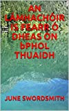 AN LÁMHACHÓIR IS FEARR Ó DHEAS ÓN bPHOL THUAIDH (Irish Edition)