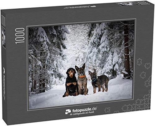 fotopuzzle.de Puzzle 1000 Teile Gruppe von DREI Hunden, die im Winter im Schnee sitzen. Rottweiler, Deutscher Schäferhund und Deutscher Schäferhund Welpe (1000, 200 oder 2000 Teile)