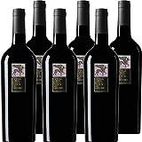 Lacryma Christi Rosso del Vesuvio | Feudi di San Gregorio | Vino Rosso della Campania | Confezione da 6 Bottiglie da 75 Cl | Idea Regalo