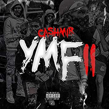 YMF II