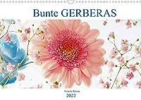 Bunte Gerberas (Wandkalender 2022 DIN A3 quer): Gerberas strahlen um die Wette (Monatskalender, 14 Seiten )
