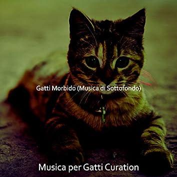Gatti Morbido (Musica di Sottofondo)