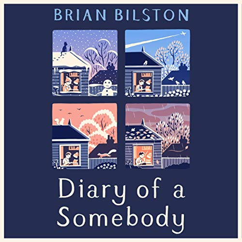 Diary of a Somebody audiobook cover art