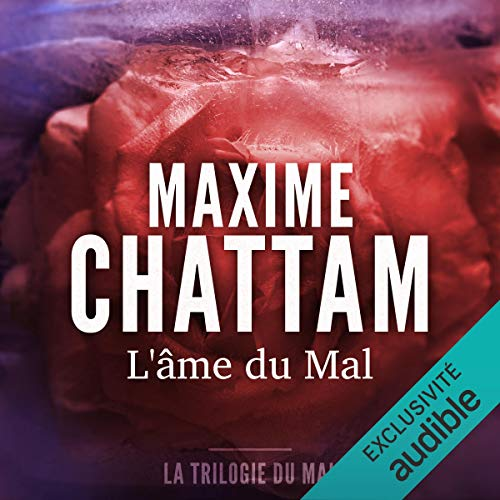 L'âme du mal Audiobook By Maxime Chattam cover art