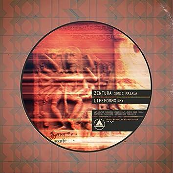 Sonic Masala (Lifeforms Remix)