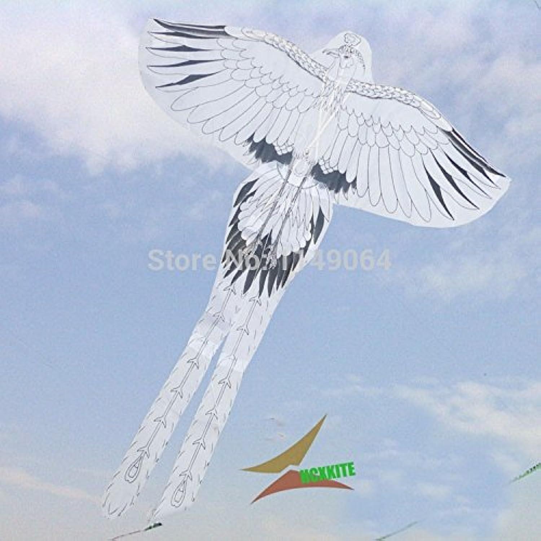 FZSWD Kites High Quality Diy Eagle Kite Phoenix 2Pcs Lot With Handle Line Bird Kite Game Kite Flying Dragon Diy Kite