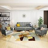 Christopher Knight Home Treston Mid-Century Fabric Sofa Chat Set, 3-Pcs Set, Grey / Natural