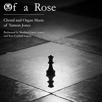 Tamsin Jones: Of a Rose