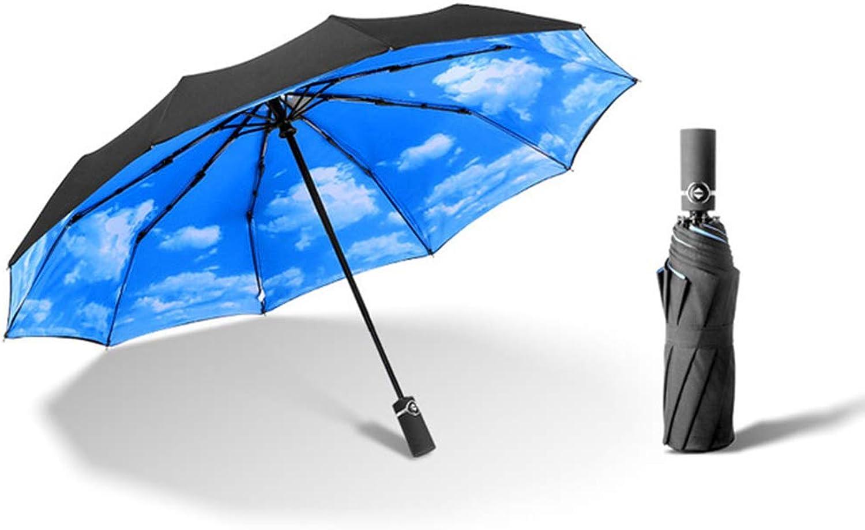 Double Layer Windproof Travel Folding Umbrella Auto Open Close,Ergonomic Handle & Predective Travel Sleeve,Portable Compact Foldable 10 Ribs Umbrella