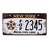SIGNCHAT los angeles california state background novelty license plate license plate 15x30 cm