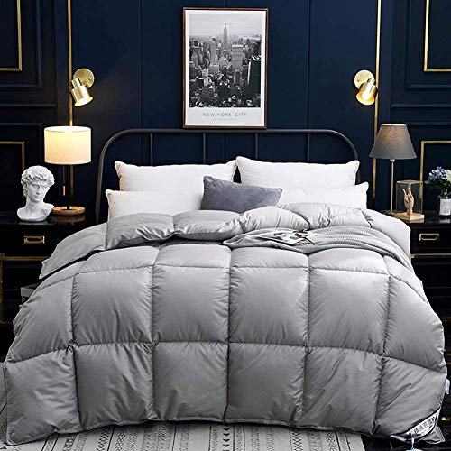 Super Simple Gray Winter Thicken 95% White Goose Down Duvet Double Size 12.5 Tog All Seasons Duvet Insert Classic Quilt Hypoallergenic Cotton Shell Warm (Color : 150x200cm)