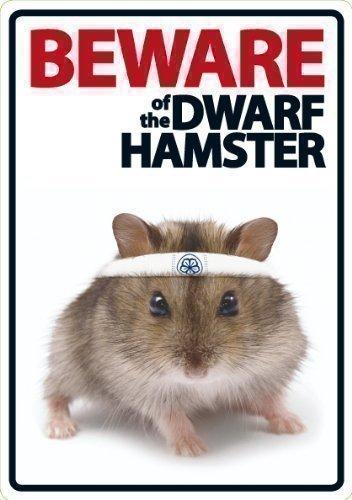 Magnet & Steel Vorsicht vor der Zwerg Hamster A5Schild