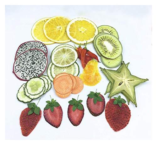 THQC Mixed Exopy Obst + Gemüse Scheiben Pflanze Herbarium for Fotorahmen Telefon-Kasten-Fertigkeit DIY Herstellung Getrocknet 40pcs Gepresste