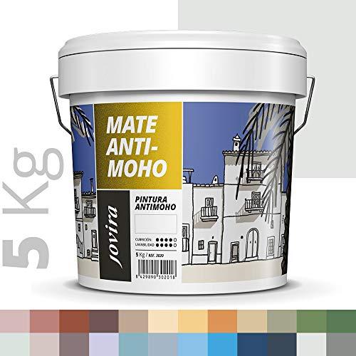 PINTURA ANTIMOHO, evita el moho, resistente a la aparición de moho en paredes, aspecto mate. (5 KG, PERLA)