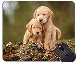 Yanteng Almohadillas para ratón, Alfombrilla para Juegos, alfombras para Mascotas, Perros, Pelo Dorado - Bordes cosidos