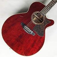 Takamine DMP50S WR エレアコギター 島村楽器 x Takamine コラボモデル (タカミネ)
