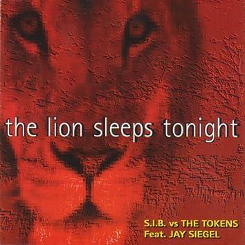 The Lion Sleep Tonight (Dance Remix)