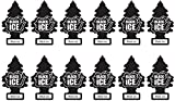 LITTLE TREES Car Air Freshener | Hanging Paper Tree for Home or Car | Black Ice | 12 Pack
