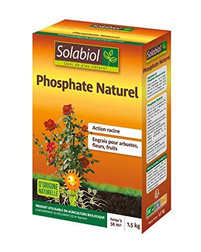 Solabiol SOPHO15G10 Phosphate Naturel 1,5 Kg,