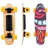Kulzer Skateboard électrique avec télécommande, 25,4 '' Longboard Electrique, Vitesse de Maximale de 20 km/h, Moteur de 350 W, 7 Couches de Planche Feuille D'érable Solide