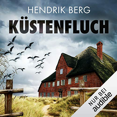 Küstenfluch cover art