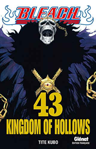 Bleach - Tome 43: Kingdom of hollows
