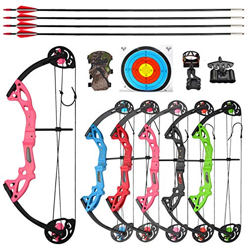 NMCPY Archery Junior Compound Bow and Arrow Gifts Set 15-29lbs Children Bow Toy Kits for Youth Training Shooting Game,with Compound Bow Accessory and Protective Gear